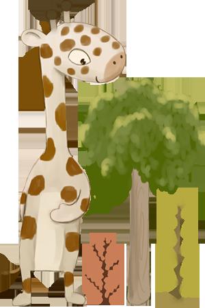 junglecatz playcentre